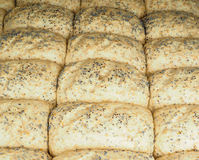 Closeup of proofed unbaked rolls with poppy seeds Stock Images