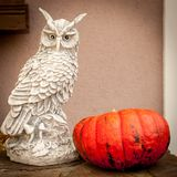 A pumpkin and a figurine of an owl stock photography