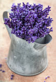 Closeup of purple lavender bouquet Royalty Free Stock Photography