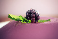Closeup on a purple pudding with a blackberry Stock Images