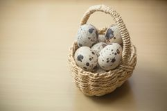 Quail eggs in basket on wooden table background. Closeup of quail eggs in basket on wooden table background Stock Photo