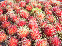 Closeup rambutans. In the plate on the table Stock Images