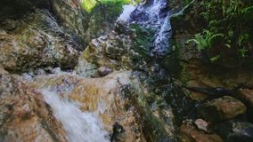Closeup Rapid Flow of Water from Stone to Stone into Creek stock video footage