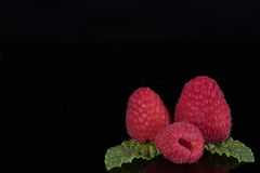 Closeup of raspberries with mint leaves on black background. Closeup of raspberries with mint leaves in corner isolated on black background Royalty Free Stock Images