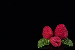 Closeup of raspberries with mint leaves on black background. Closeup of raspberries with mint leaves isolated on black background Royalty Free Stock Photos