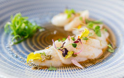 Closeup of raw scallops fine dining. Fresh raw scallops sashimi dish. Sashimi is a Japanese cuisine delicacy consisting of sliced raw meat usually fish and Stock Photography