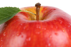 Closeup red apple fruit with leaf isolated Stock Photography