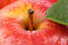 Closeup red apple fruit with leaf Stock Photo
