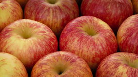 Apples Rotating. Closeup of red apples rotating slowly