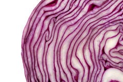 Closeup red cabbage Stock Photography