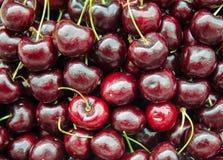 Closeup red cherries Stock Image