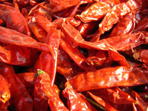 Closeup of Red Chillies Stock Images