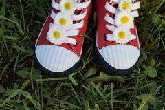 Red kid sneakers with flowers in grass stock images