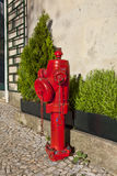 A closeup red fire hydrant. On a street Royalty Free Stock Photo
