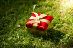 Closeup of red gift box lying on meadow at sunny day Stock Images