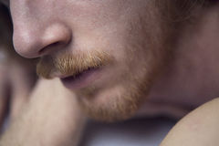 Closeup of red-haired man's beard Stock Image