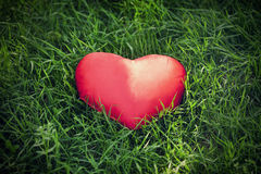 Closeup of a red heart on the grass Stock Image