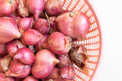 Closeup red onion in basket Royalty Free Stock Photo