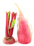 Closeup of red radish. Over white background Stock Photography