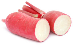 Closeup of red radish. Over white background Royalty Free Stock Photo