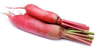 Closeup of red radish. Over white background Royalty Free Stock Photography