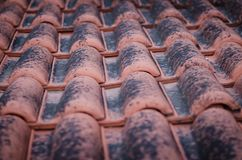 Closeup of red roof tiles covered with black moss stock photo