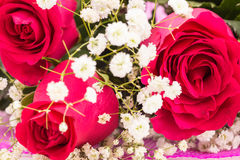 Closeup of red roses bouquet Royalty Free Stock Photo