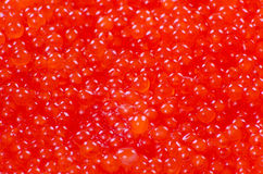 Red caviar background Royalty Free Stock Images