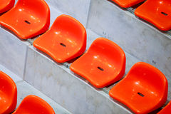 Closeup of red sport stadium seats. Empty stand. Team sport supporter Royalty Free Stock Image
