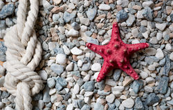 Closeup of red starfish and marine knot lying on colorful pebble Stock Images
