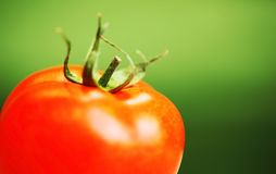 Closeup on red tomato Stock Photography