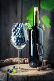 Closeup of red wine in bottle and grapes in glass. On wooden background Stock Photography