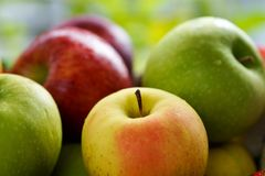 Assorted apples. Closeup of red and yellow desert apples and green cooking apples, blurred background Stock Photography