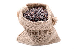 Closeup Rice berry in sack on white background Royalty Free Stock Photo