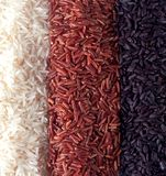 Closeup rice mix. Black, red and white royalty free stock photography