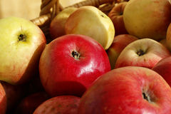 Closeup of ripe apples in a basket Royalty Free Stock Photography