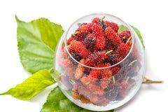 Closeup ripe black mulberries Stock Images