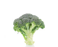 Closeup of ripe broccoli. Stock Photos