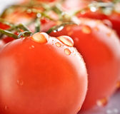 Closeup ripe fresh cherry tomatos Royalty Free Stock Photos