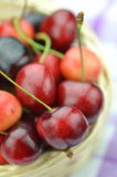 Closeup of ripe, fresh and sweet cherries in wicker basket Stock Images