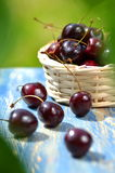 Closeup of ripe, fresh and sweet cherries in wicker basket on table Stock Images