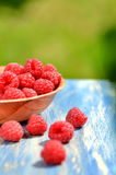 Closeup of ripe, fresh and sweet raspberries in a bowl on table. In the garden Royalty Free Stock Photo