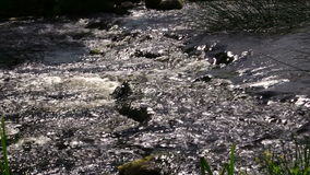 Closeup of river water stream flow between stones. Zoom out stock video footage