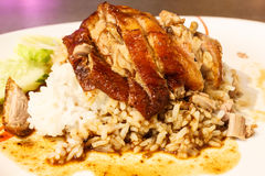 Closeup roast duck with rice and sauce Royalty Free Stock Image