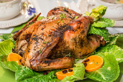 Closeup of roasted big turkey for thanksgiving Royalty Free Stock Photos