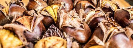 Closeup of roasted chestnuts Stock Photography
