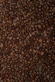 Roasted Coffee Beans Filling the Whole Frame royalty free stock photo