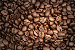 Coffee beans. Closeup of roasted coffee beans Royalty Free Stock Images