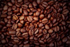 Roasted coffee beans. Closeup of roasted coffee beans Stock Photography