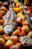 Roasted seabream and potatoes with herbs and tomatoes. Closeup of roasted seabream and potatoes with herbs and tomatoes stock image